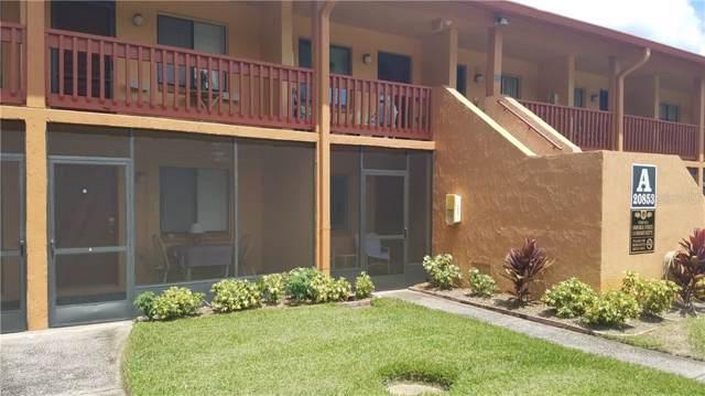 20853 Haulover Cove A-11, Lutz, FL 33558 (MLS #U8057484) :: Armel Real Estate