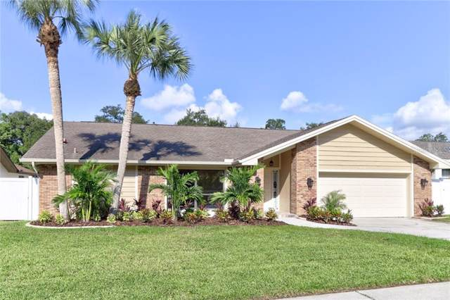 3051 Kevlyn Court, Safety Harbor, FL 34695 (MLS #U8057555) :: Paolini Properties Group