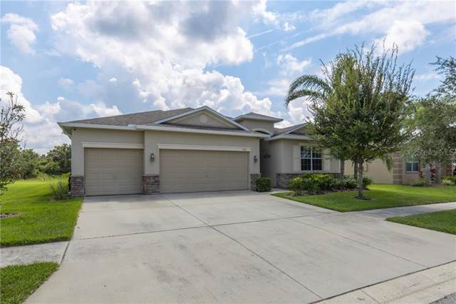 505 Washita Stone Drive, Ruskin, FL 33570 (MLS #U8057718) :: Baird Realty Group