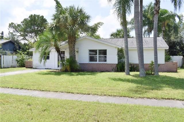 1407 Castleworks Lane, Tarpon Springs, FL 34689 (MLS #U8057859) :: Armel Real Estate