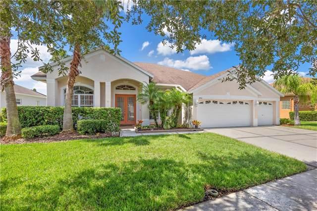 5401 Silver Charm Terrace, Wesley Chapel, FL 33544 (MLS #U8058096) :: GO Realty