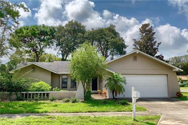 8902 Warrior Way, Hudson, FL 34667 (MLS #U8058105) :: Dalton Wade Real Estate Group