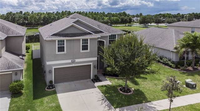 11311 Langworth Hill Lane, Riverview, FL 33579 (MLS #U8058149) :: Premium Properties Real Estate Services