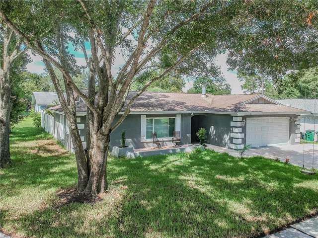 100 Woodburn Court, Safety Harbor, FL 34695 (MLS #U8058185) :: Paolini Properties Group
