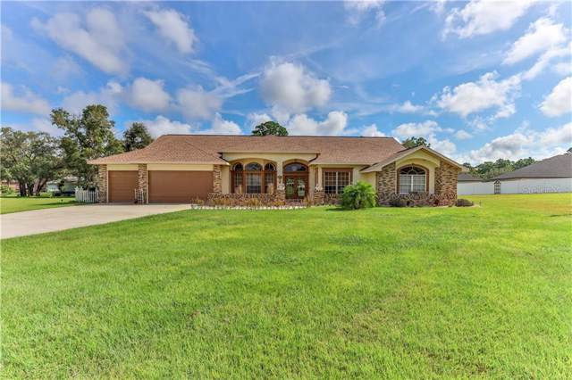 356 Lisson Grove Lane, Spring Hill, FL 34609 (MLS #U8058572) :: Griffin Group