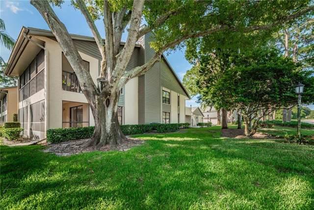 3167 Landmark Drive #811, Clearwater, FL 33761 (MLS #U8058775) :: Griffin Group