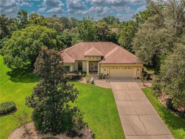 13843 Rudi Loop, Spring Hill, FL 34609 (MLS #U8058830) :: Griffin Group