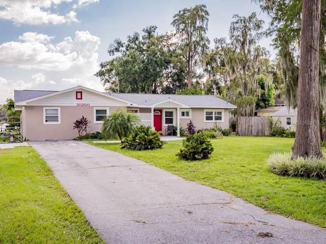 20200 County Line Road, Lutz, FL 33558 (MLS #U8058879) :: Zarghami Group