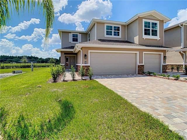 5500 Riverwalk Preserve Drive, New Port Richey, FL 34653 (MLS #U8058905) :: EXIT King Realty