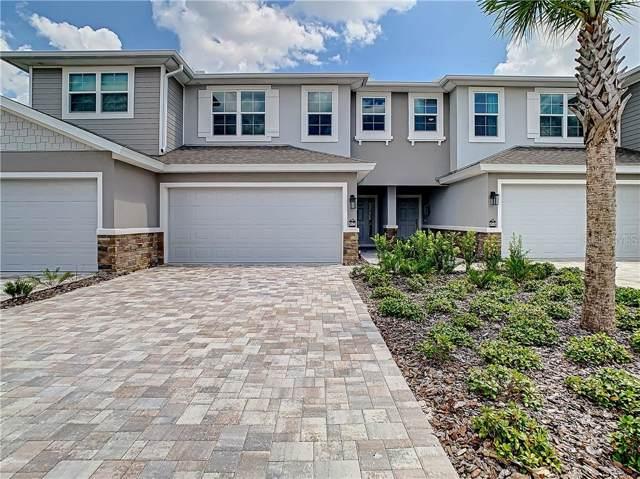 5284 Riverwalk Preserve Drive, New Port Richey, FL 34653 (MLS #U8058907) :: EXIT King Realty