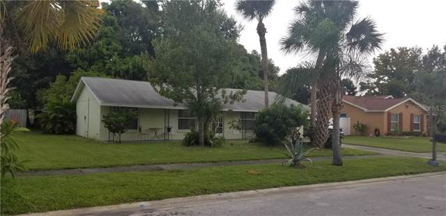 1424 Castleworks Lane, Tarpon Springs, FL 34689 (MLS #U8058913) :: Team Borham at Keller Williams Realty