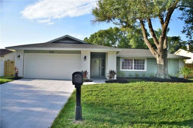 3123 Teal Terrace, Safety Harbor, FL 34695 (MLS #U8058916) :: Paolini Properties Group