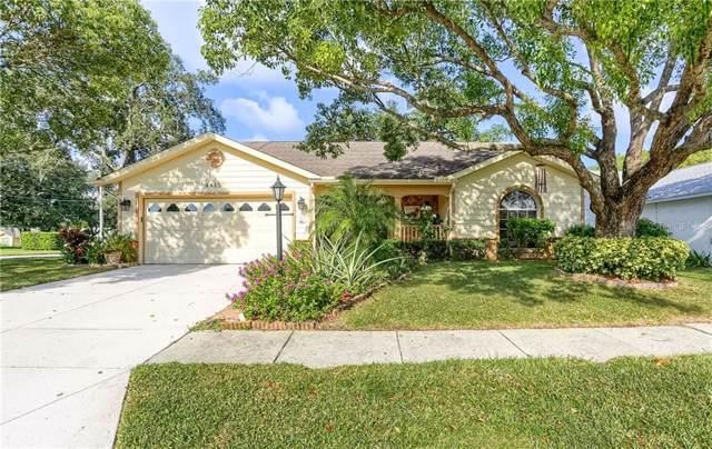 4815 Bellemede Boulevard, New Port Richey, FL 34655 (MLS #U8058938) :: McConnell and Associates