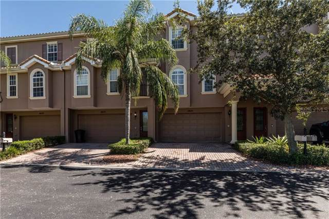 4625 Overlook Drive NE, St Petersburg, FL 33703 (MLS #U8058962) :: Delgado Home Team at Keller Williams