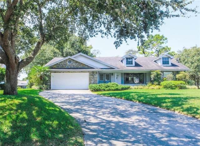 13027 Wyndale Drive, Bayonet Point, FL 34667 (MLS #U8059074) :: Team 54
