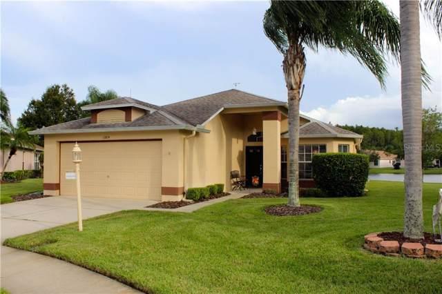 11604 Weaver Park Court, Trinity, FL 34655 (MLS #U8059086) :: Premier Home Experts