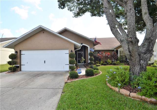 4600 Sawgrass Boulevard, New Port Richey, FL 34653 (MLS #U8059192) :: EXIT King Realty