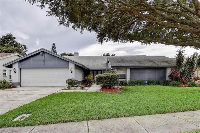 2477 Stag Run Boulevard, Clearwater, FL 33765 (MLS #U8059267) :: Cartwright Realty