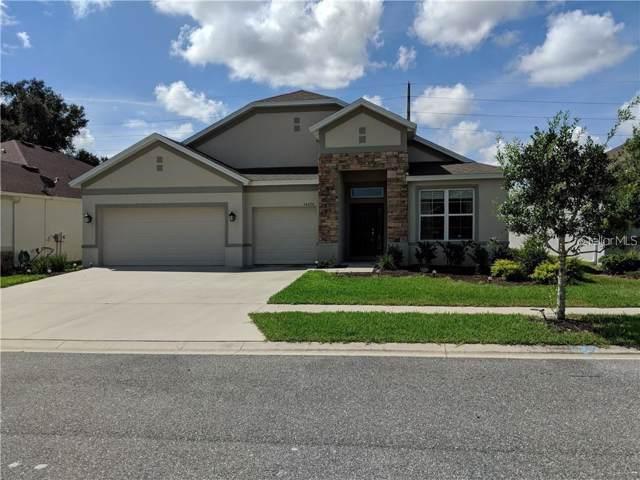34030 Laughing Oak Drive, Wesley Chapel, FL 33545 (MLS #U8059372) :: Team 54