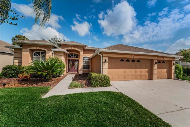 8613 Lovas Trail, Trinity, FL 34655 (MLS #U8059392) :: Premier Home Experts