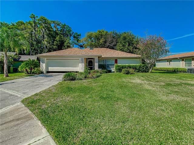 9807 Didrikson Drive, New Port Richey, FL 34655 (MLS #U8059426) :: Griffin Group