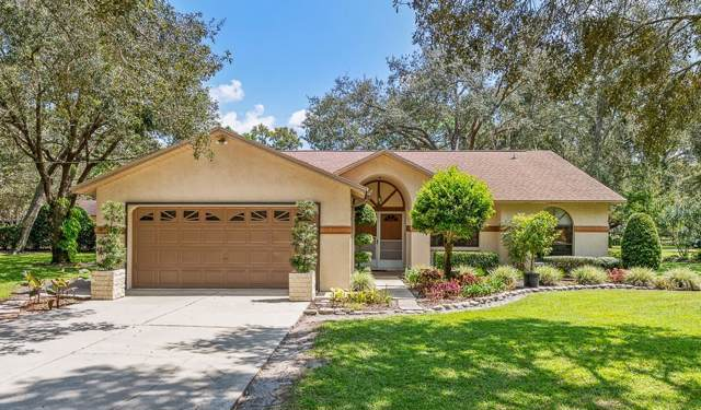 18410 Akins Drive Drive, Spring Hill, FL 34610 (MLS #U8059484) :: Rabell Realty Group