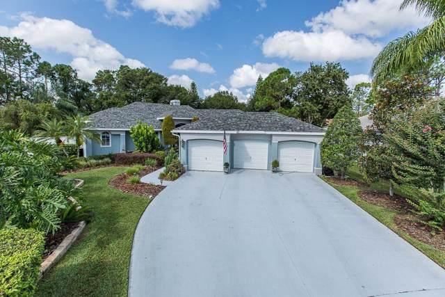 1042 Hunters Place, Oldsmar, FL 34677 (MLS #U8059504) :: Paolini Properties Group