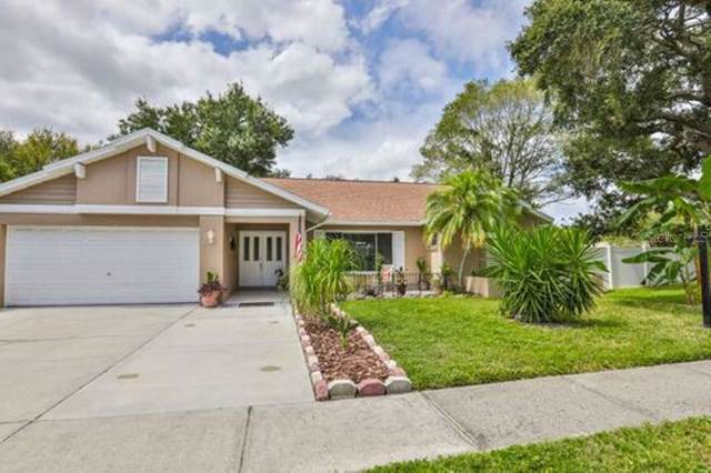 2693 Colony Drive, Dunedin, FL 34698 (MLS #U8059530) :: Burwell Real Estate