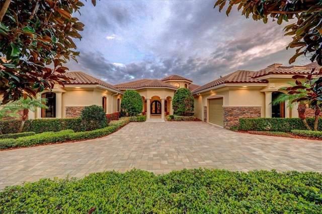 1348 Playmoor Drive, Palm Harbor, FL 34683 (MLS #U8059612) :: Team 54