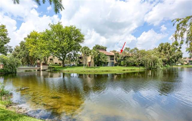 782 Village Lake Terrace N #206, St Petersburg, FL 33716 (MLS #U8059629) :: Griffin Group