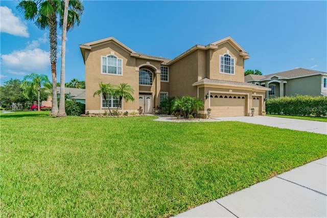 536 Cypress Bend, Oldsmar, FL 34677 (MLS #U8059695) :: Paolini Properties Group