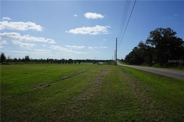 Bowman Road, Spring Hill, FL 34610 (MLS #U8059720) :: EXIT King Realty