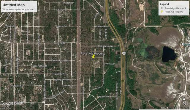 14056 Race Avenue, Weeki Wachee, FL 34614 (MLS #U8059899) :: Premier Home Experts
