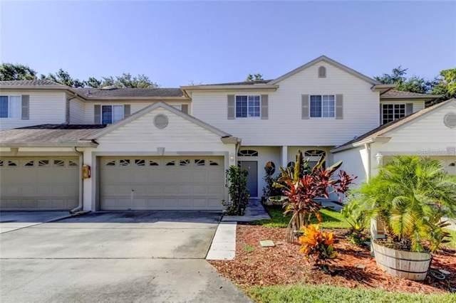 3116 Meta Court, Largo, FL 33771 (MLS #U8060055) :: Griffin Group