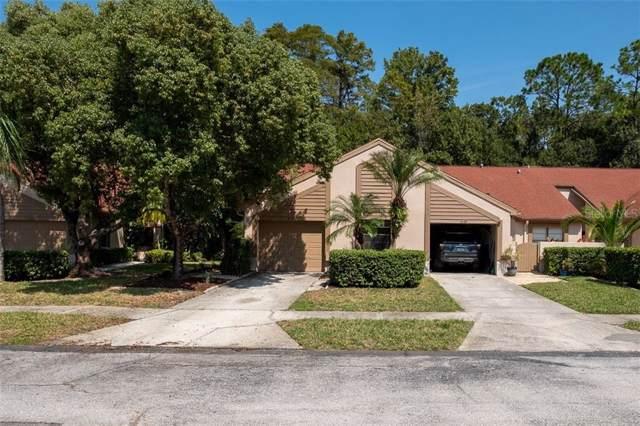 4037 Mermoor Court, Palm Harbor, FL 34685 (MLS #U8060351) :: Delgado Home Team at Keller Williams