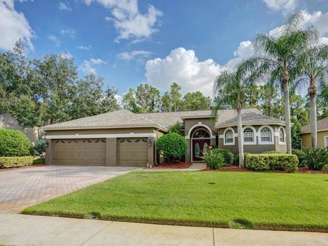 3782 Pendlebury Drive, Palm Harbor, FL 34685 (MLS #U8060442) :: Delgado Home Team at Keller Williams