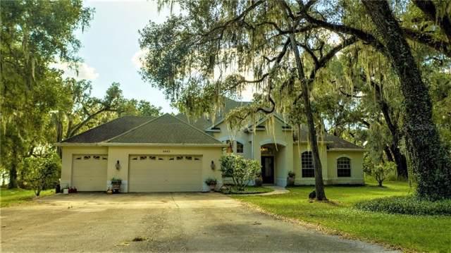 6443 Griffin Road, Brooksville, FL 34601 (MLS #U8060539) :: Team TLC | Mihara & Associates