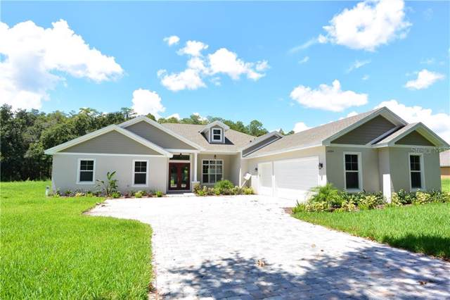 17841 Simmons Road, Lutz, FL 33548 (MLS #U8060615) :: Griffin Group