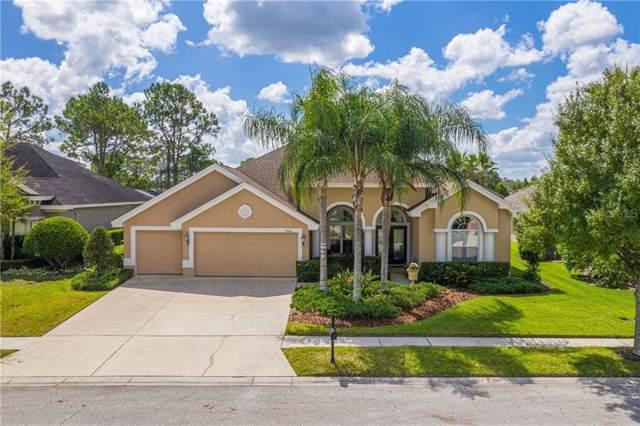 23346 Gracewood Circle, Land O Lakes, FL 34639 (MLS #U8061031) :: The Nathan Bangs Group