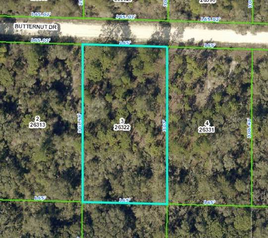 Butternut Drive, Webster, FL 33597 (MLS #U8061188) :: CENTURY 21 OneBlue