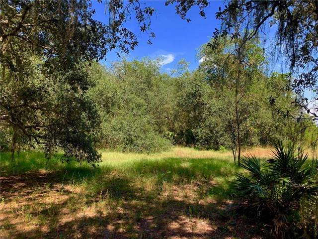 Keefer Trail, Kissimmee, FL 34747 (MLS #U8061211) :: KELLER WILLIAMS ELITE PARTNERS IV REALTY