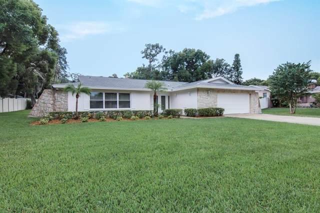 1426 Glenview Road, Palm Harbor, FL 34683 (MLS #U8061467) :: The Light Team