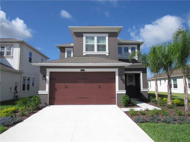 4793 Tramanto Lane, Wesley Chapel, FL 33543 (MLS #U8061535) :: Team Bohannon Keller Williams, Tampa Properties
