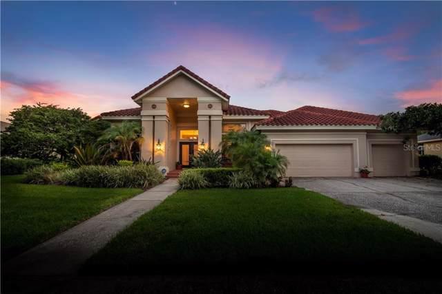 5029 Wesley Drive, Tampa, FL 33647 (MLS #U8061580) :: Rabell Realty Group
