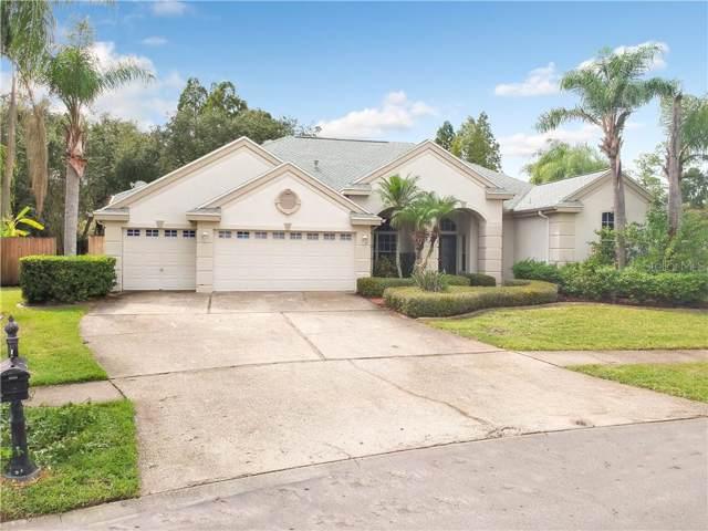 12003 Wandsworth Drive, Tampa, FL 33626 (MLS #U8061861) :: Team Bohannon Keller Williams, Tampa Properties