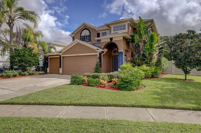 16137 Lytham Drive, Odessa, FL 33556 (MLS #U8062023) :: Team Bohannon Keller Williams, Tampa Properties
