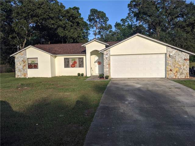 1250 Finland Drive, Spring Hill, FL 34609 (MLS #U8062027) :: Premium Properties Real Estate Services
