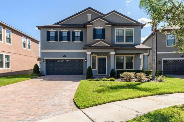 19421 Paddock View Drive, Tampa, FL 33647 (MLS #U8062029) :: Cartwright Realty
