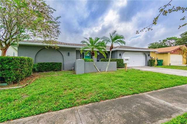 3529 Snowy Egret Court, Palm Harbor, FL 34683 (MLS #U8062090) :: Lovitch Realty Group, LLC