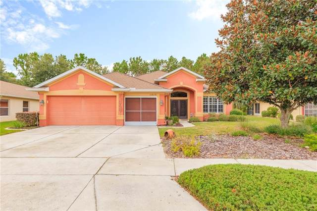 11610 New Haven Drive, Spring Hill, FL 34609 (MLS #U8062122) :: Homepride Realty Services